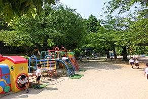 緑に囲まれた園庭